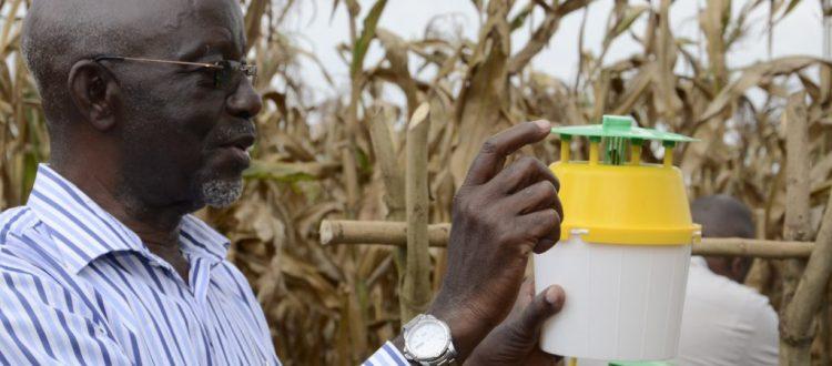 Dr John Bahana, National Consultant for Intergrated Pest Management at FAO Uganda demonstrating use of the pheromone trap.(Photo by David Mafabi)